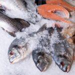 Fisch einfrieren – so geht's