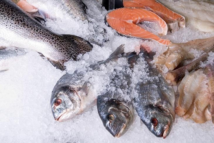 Fisch einfrieren