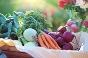 Haltsbarkeit von frischem Obst und Gemüse